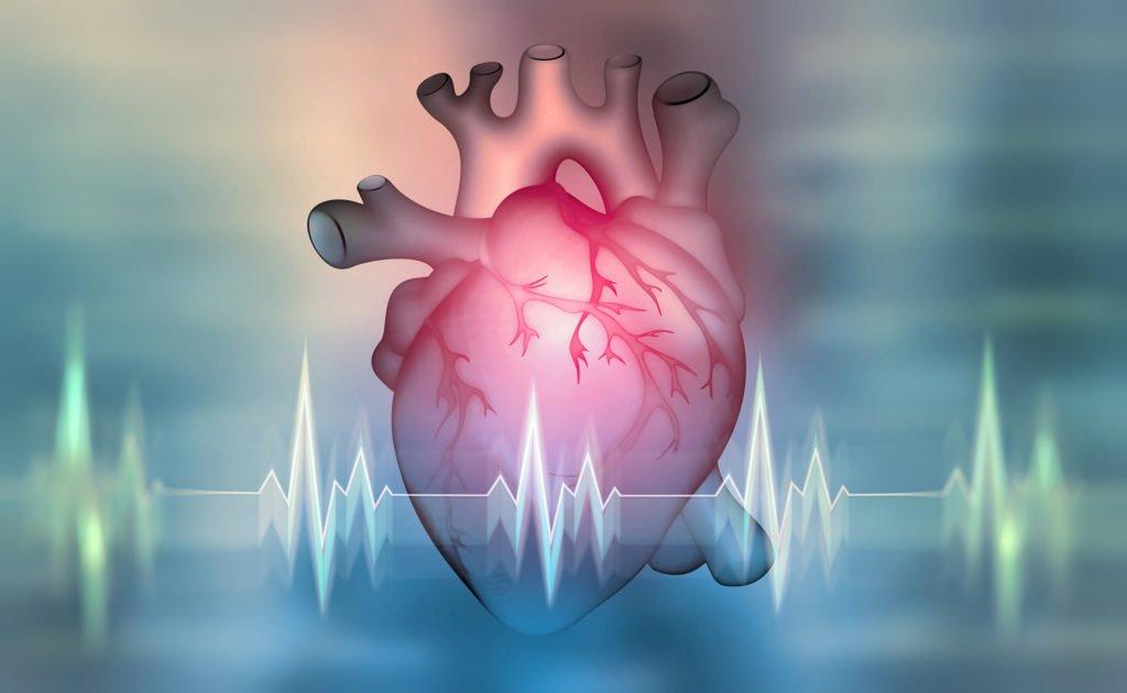 Therapie gegen Herzrhythmusstörungen erstmals erfolgreich