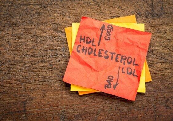 Cholesterin protein Entdeckung weckt die Hoffnung für einen INTELLIGENTEREN Drogen