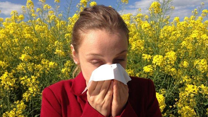 Nahrungsmittel-Allergien und multiple Sklerose: Studie zeigt einen neuen link