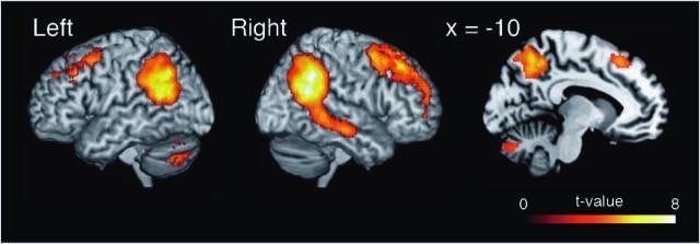 """Wie das Gehirn 'mentalizes"""" Zusammenarbeit"""