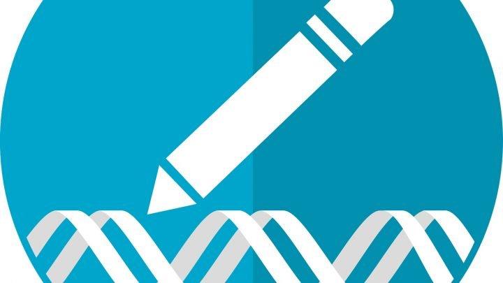 Neue Krebs-Zielmoleküle beschleunigen Weg zu Präzision Medizin