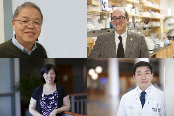 Die Forscher untersuchen Strategien für die Nutzung der Nanotechnologie zur Steigerung der Krebs-Therapeutika
