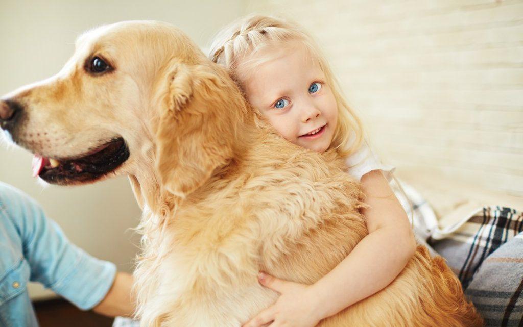 Unsere Hunde sind Überträger von neuen hochgefährlichen Viren