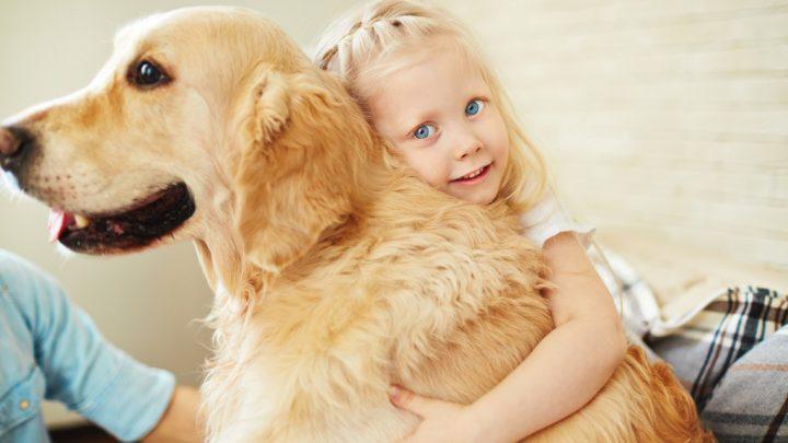 Unsere Hunde sind Überträger neuer hochgefährlicher Viren