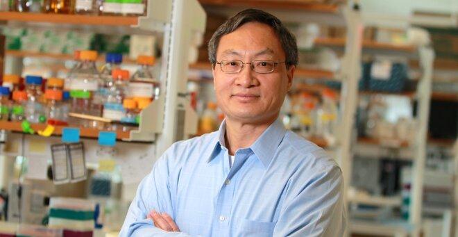 Potentielle Angriffspunkte für ALS und FTD identifiziert werden, zwei Studien