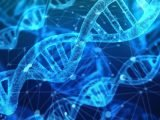 Experte beschreibt RNA, die Rolle in der Diagnose von seltenen Krankheiten