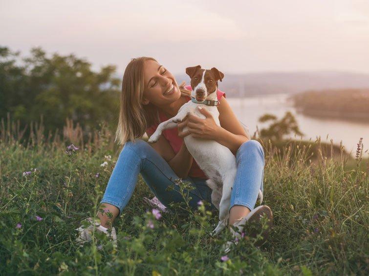 Hunde lassen sich vom Stress ihrer Besitzer anstecken