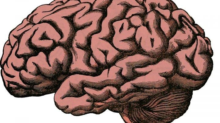 Menschen mit verschiedenen physischen Voraussetzungen haben Gehirn schneller Rückgang, höheres Selbstmord-Risiko