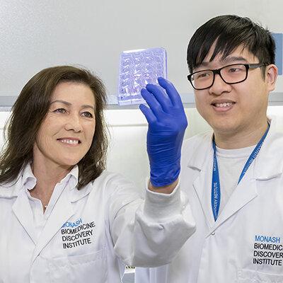 Die Entdeckung kann helfen, kick-start Alterung des Immunsystems