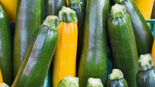 6 Dinge, Die Sie Wissen Sollten Über Zucchini