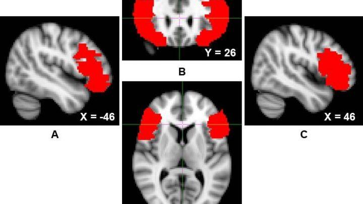 """Studie untersucht, wie Menschen mit psychopathischen Eigenschaften zu kontrollieren, Ihre """"dunklen Impulse'"""