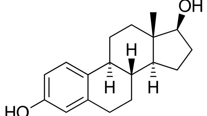 Polymerisiert östrogen gezeigt zu schützen Nervensystem Zellen