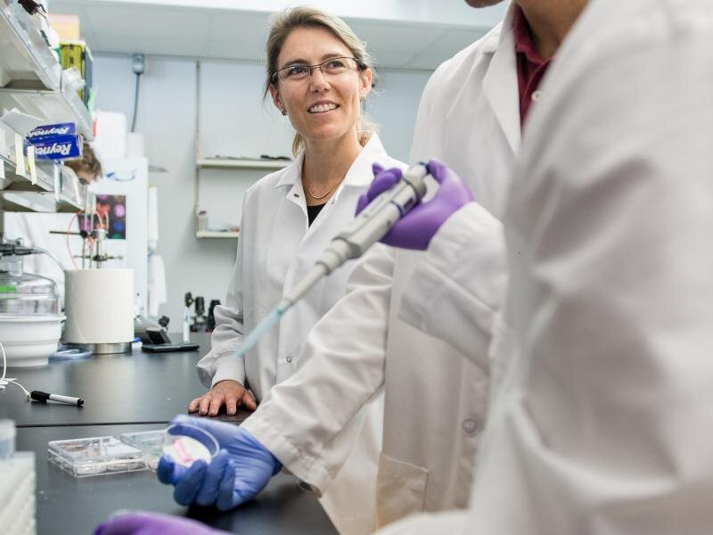 Maschinenbau-Ingenieure entwickeln tumor-Modell, dass mehr eng imitiert den Körper