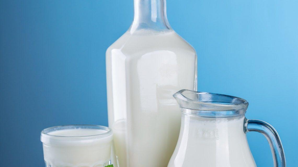 Rohe Milch kann mehr Schaden als gutes tun
