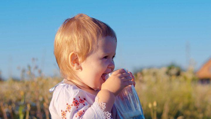 Ein Protein aus Kuhmilch schützt vor Allergien