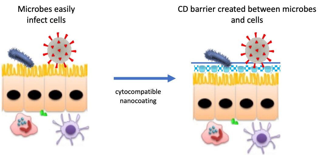 Forscher bioengineer first-line-Verteidigung gegen COVID-19