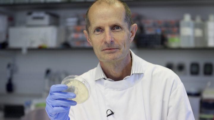 Britische Wissenschaftler immunisieren Hunderte mit Corona-Virus-Impfstoff