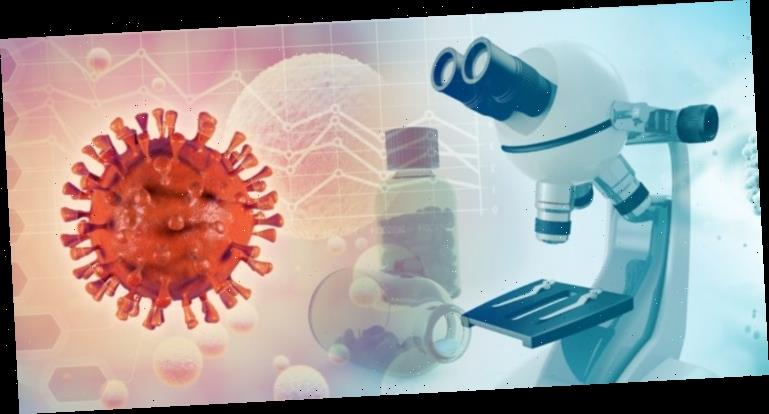 Coronavirus: So verändert SARS-CoV-2 unsere Zellen – Heilpraxis