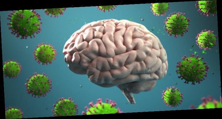 Coronavirus SARS-CoV-2 gelangt auch ins Gehirn – Was sind die Folgen? – Heilpraxis